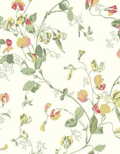 tapeta Cole & Son Botanical Botanica w kategorii Botanical Botanica / Tapety Cole & Son / Tapety, Sweet Pea