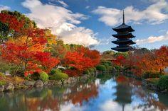 monte fuji japão - Pesquisa Google