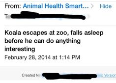 My friend subscribes to Animal Health alerts because she's a vet. This email came a few days ago.