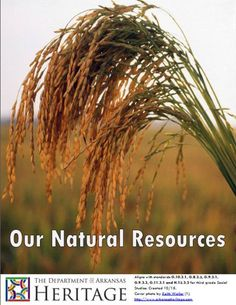 NATURAL RESOURCES OF ARKANSAS - Digital workbook aligning with standards G.10.3.1, G.8.3.2, G.9.3.1, G.9.3.3, G.11.3.1 and H.12.3.3 for third grade Social Studies. - Comes with PowerPoint, Reading Review, and a Reader filled with literacy, vocabulary, crafts, songs, writing prompts and further resources. Find the PowerPoint and Reading Review at http://www.arkansasheritage.com/Learn/dah-educational-resources Arkansas History Lesson Plan