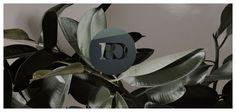 Rasmus Dengso | Photography And Digital Imagery Studio | Web Design Inspiration #ux #ui #interface #animation #interaction #userexperience #dribbble #behance #design #uitrends #instaui #magazineduwebdesign #interface #mobile #application #webdesign #app #concept #userinterface #inspiration #appdesign