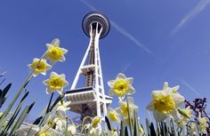 So far the Seattle minimum-wage increase is doing what it's supposed to do - Washington Post