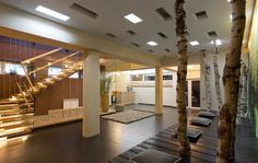 escalier tournant en bois massif, faux plafond design et déco nature