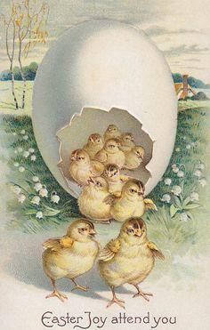 One egg, many chicks ~ vintage Easter postcard Easter Art, Easter Crafts, Vintage Greeting Cards, Vintage Postcards, Decoupage, Easter Pictures, Easter Parade, Easter Holidays, Vintage Holiday