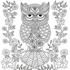 Owl Printable Coloring Pages . 24 Owl Printable Coloring Pages . Owl Coloring Pages Printable Free Detailed Coloring Pages, Coloring Pages To Print, Coloring Book Pages, Printable Coloring Pages, Coloring Sheets, Hello Kitty Coloring, Pokemon Coloring, Mandala Coloring, Scrap