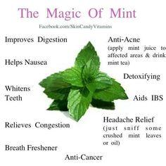 Mint power