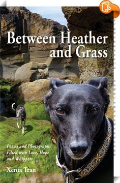 Between Heather and Grass    :  Between Heather and Grass by Xenia Tran, soulful poems & photographs filled with love & whippets Forms Of Poetry, Online Marketing Tools, Baby Otters, Apple Books, Animal Photography, Poetry Photography, Wildlife Photography, Poetry Collection, Baby Animals