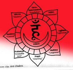 Hrit Chakra, just below the Heart Chakra.. also known as ananda kanda (root or bulb of bliss)