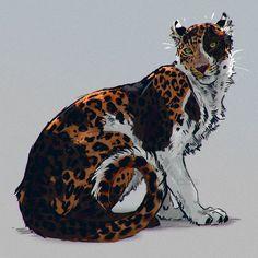 """6,543 curtidas, 40 comentários - Anna Podedworna (@akreon) no Instagram: """"A calico leopard. #sketch #calico #cat #leopard #jaguar #bigcat #tortoiseshell #tricolor"""""""