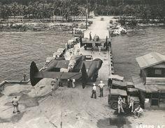 New arrivals P-61