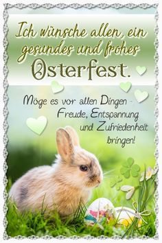 Happy Birthday Fun, Holidays And Events, Happy Easter, Cards, Animals, Easter Decor, Pictures, Happy Easter Pics, Happy Easter Day