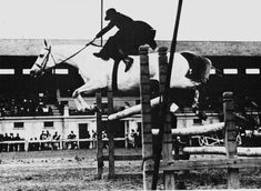 Horses in History: 1936 Hungarian Olympic Trials Champion, #Horsewoman, #Equestrian, #Sidesaddle Jumper, and War Hero to boot!