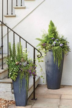 A planter in a faux-lead finish is a timeless choice, but the cylindrical shape of these tall fiberclay urns gives them a really clean feel. Having a different color or texture helps the color pop. Here, string of pearls creates plenty of textural drama a Garden Troughs, Garden Planters, Planter Pots, Planter Ideas, Herbs Garden, Vegetable Garden, Jardin Decor, Tall Planters, Large Outdoor Planters
