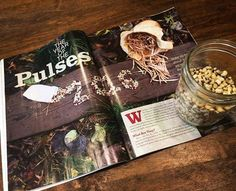 Catching up on the latest issue of @hobbyfarms & loving this feature on pulses!! Started shelling and drying my extra beans last year for soups without knowing what it was called. I love learning about homesteading !!