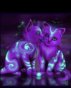Purple cats ♥♥