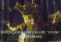 """When Gandalf is called """"young"""" by Treebeard.  Submitted by nerdfighterfrompigfarts."""