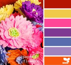 Design Seeds - color palette website - so neat!  Find color and see a palette match for that color.  Great for color addicts