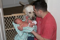 Introducing your newborn to your dog - good advice if you have dogs that get super excited when you're in the room with them