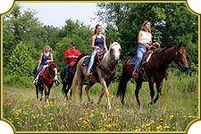 1000 Images About 99 Adventure Attractions For Groups On