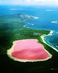 Lake Hillier, Australia. The pink color of the lake is thought to come from red halophilic bacteria in the salt crusts.