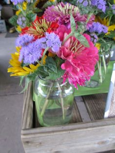 flowers grown at Maple Acres Farm