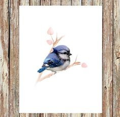 Blue jay painting baby bird print baby bluejay bird от fluffibee