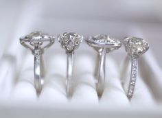 Caroline Halo, Grace Solitaire, Ava Halo, and  Laurel Solitaire engagement rings by Erika Winters