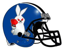 Image result for football helmet on a bunny