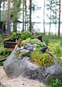Kiviä on hyödynnetty asetelmissa.