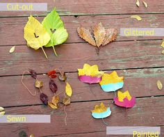 Cutting initials into leaves is a simple touch that will make your table look comfortable and personal. Turn each leaf over and lightly pencil in the letter of choice, using a small pair of craft scissors carefully cut out the markings. Be sure to use freshly fallen leaves for this project so they won't crumble and make a point to wash each leaf if it will rest upon a plate used for eating. Collecting leaves is a perfect project for the kids to accomplish as you finish the day of party prep.
