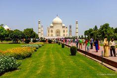 Taj Mahal: é dificil caminhar por aqui, sem as paradas constantes para tirar uma foto