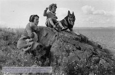 Anne Lindbergh, her son Jon, dogs Thor and Skean at North Haven, Maine. The Manuscripts and Archives Digital Images Database (MADID) Anne Morrow Lindbergh, North Haven, Image Database, Digital Image, Thor, Famous People, Maine, The Past, University