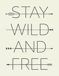 Stay Wild and Free Typography Quote by PropellerHeadStudios, $25.00