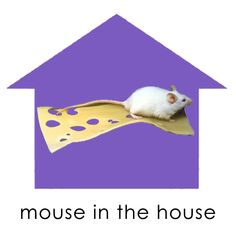 cheese knife What Is Essential, Cheese Knife, House Mouse, The Hamptons, Essentials