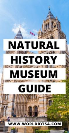 One of the most famous museums in London, the Natural History Museum is located in an iconic building and has a collection of heavy...