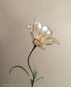 Купить Колокольчик Садовый (Campanula) - бледно-сиреневый, садовые цветы, сад, зимина маргарита, стекло