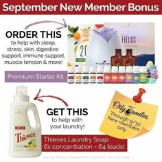 Young Living Essential Oils- Look! Great deal from Young Living plus a welcome pack & online support from me when you join my team :) Essential Oil Starter Kit, Yl Essential Oils, Young Living Essential Oils, Holistic Massage, Family Support, Diffuser Recipes, Muscle Tension, Instagram Feed, Told You So