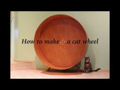 How to make a cat wheel - YouTube