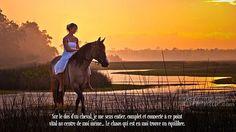Sur le dos d'un cheval, je me sens entier, complet et connecté à ce point vital au centre de moi même... Le chaos qui est en moi trouve un équilibre.
