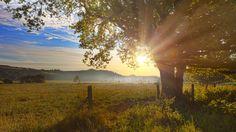 Sunrise in Sauerland, Germany