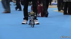 Amazing Bike Riding Robot! Can Cycle, Balance, Steer, and Correct Itself | Masahiko Yamaguchi is the creator of what's possibly the world's first robot to ride a miniature fixed gear bike using the same mechanics we humans do. | Read more: http://gwyl.io/robot-on-a-fixed-gear-bike-can-balance-steer-and-correct-itself/