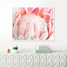 Check out our protea photograph selection for the very best in unique or custom, handmade pieces from our shops. Protea Art, Protea Flower, Floral Flowers, Art Floral, Fresh Flowers, Florals, Pink Flower Photos, Dining Room Table Centerpieces, Botanical Wall Art
