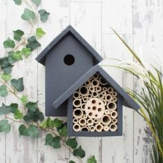 The Birds and the Bees, Urban Slate