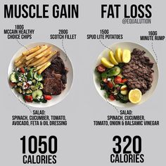 Must Have nutrition clue to put together any meal beneficial. Check out this quite resourceful nutrition pinned image reference 2267494829 today. Weight Gain Meals, Meal Plans To Lose Weight, Healthy Weight Gain, Healthy Meal Prep, Healthy Snacks, Healthy Recipes, Healthy Protein, Keto Recipes, Vitamix Recipes