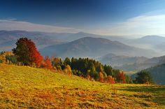 Dolina Popradu i Pasmo Jaworzyny Krynickiej - widok z Piwowarówki, Beskid Sądecki