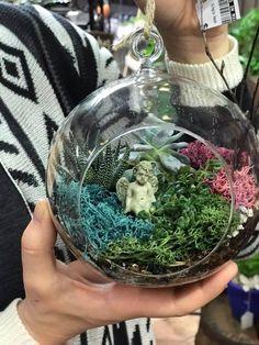 Miniature Hanging Terrarium