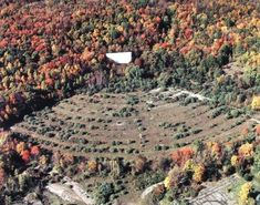 Abandoned Drive-In Theater, New Jersey
