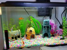 How to Take Care of Goldfish. Goldfish can be rewarding and medium-maintenance pets but aren't perfect for beginners. Although goldfish require as much care and equipment as most aquarium fish, an aquarium that is too small will eventually. Aquarium Fish Food, Aquarium Shop, Goldfish Aquarium, Aquarium Design, Tropical Freshwater Fish, Tropical Fish, Spongebob Fish Tank, Goldfish Care, Fish Tank Themes