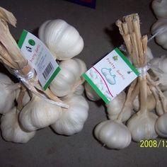 1 new message Garlic Farm, Grow Taller Exercises, Boer Goats, Organic Garlic, Garlic Bulb, Leg Tattoo Men, How To Grow Taller, Sunflower Oil, Garlic Powder