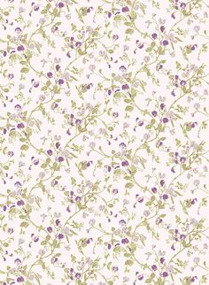 Pattern Name: SWEET PEA Collection: A Collection Of Flowers Brand: Cole & Son Width: 52cms/20.5ins Repeat: 38cms/15ins Match: half drop Pattern Numbers: